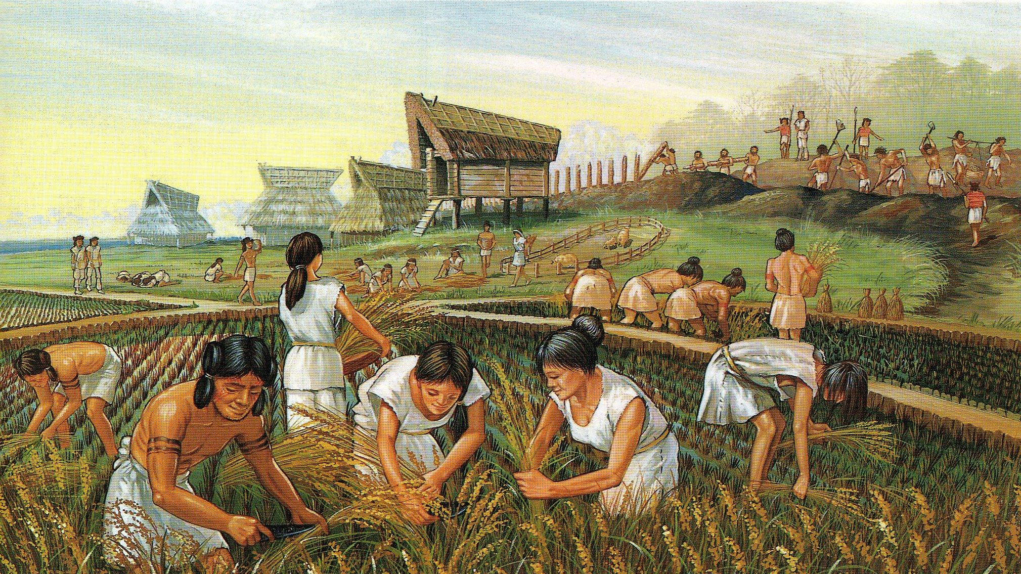 Chapter 1. Neolithic Era and Transition to Agriculture -