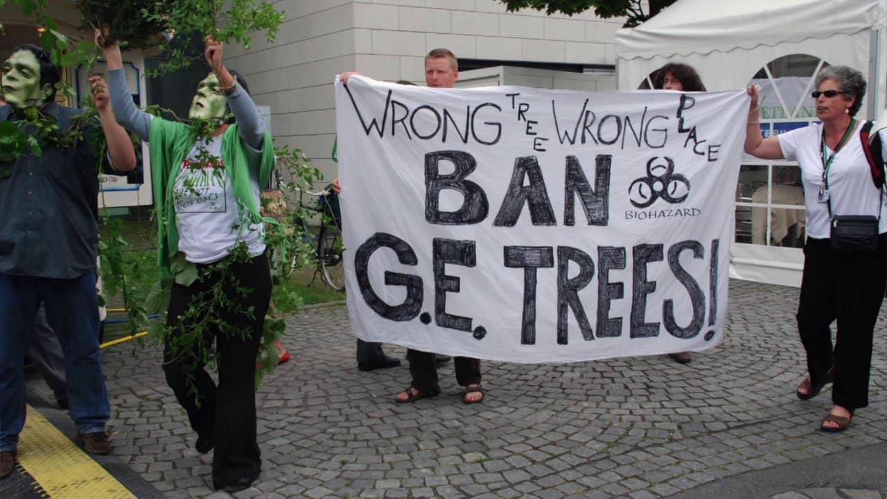 G E Trees
